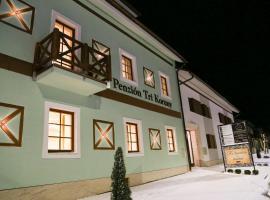 Guest House Tri Koruny, Spišská Stará Ves