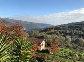 Casa Regina Degli Ulivi, Villa Viani (Sarola yakınında)