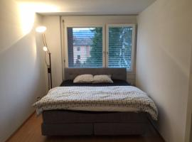 Apartment Simon 5, Baden