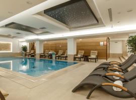 Hotel Gabriela, Vişeu de Sus