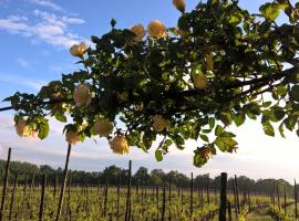 Cascina La Maddalena Bed & Wine, Rocca Grimalda (Mantovana yakınında)