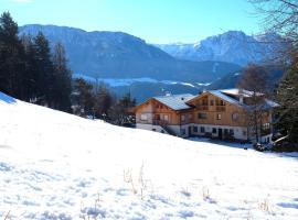 Pension Haus Tirol, Laion