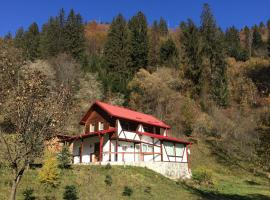 Casa de Vacanta Daria, Voineasa