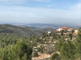 Mount Dreams, Шореш (рядом с городом Bar Giyora)