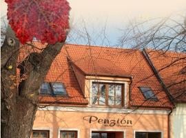 Penzion na Potočnej, Skalica (Radějov yakınında)