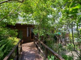 Big Tree House Lodge