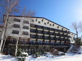Hotel Kodama, Yamanouchi