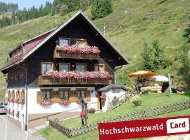 Gästehaus Wild, Menzenschwand (Menzenschwand-Hinterdorf yakınında)