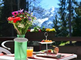 Tanneneck Hotel Garni, Hirschegg