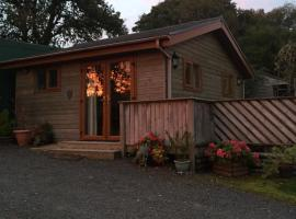 Swansea Log Cabin, Pontardawe (рядом с городом Llangiwg)
