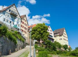 Hotel-Gasthof Schiff, Horb am Neckar (U blizini grada 'Empfingen')