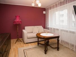 Convenient Central Apartment