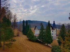 Villa Grohmann, Lipova Lazne