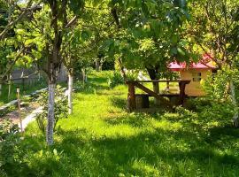 Green House, Turda