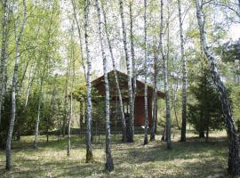 Cozy remote cabin on a lakeshore, Kučiūnai (рядом с регионом Ančia)