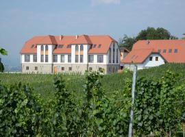 Weingut Taggenbrunn, Taggenbrunn