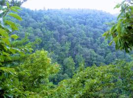 North Carolina Mountain Retreat, Lake Toxaway