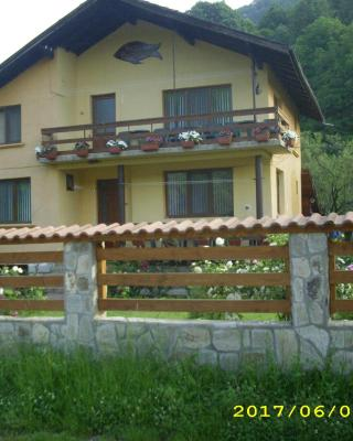 Villa Ribarica