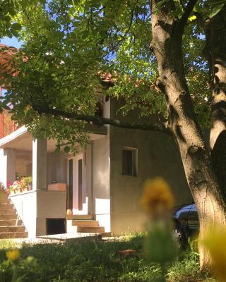 Ozren Slopes Apartment