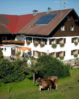 Ferienhof-Fink-Ferienwohnung-Gaensebluemchen