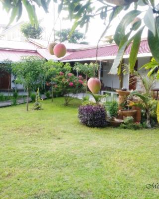 Minine Guesthouse