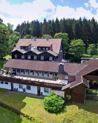 Lieblingsplatz, Mein Berghotel