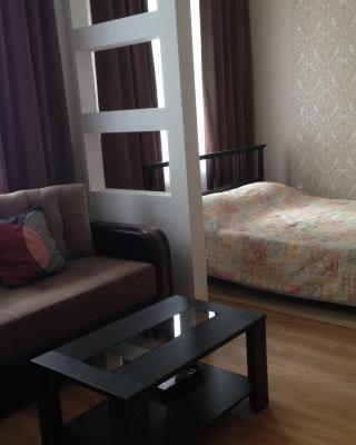 Apartment on Mironenko