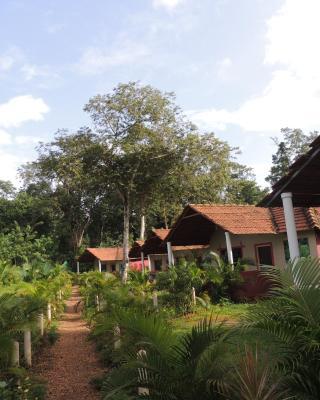 Jungle Nest - Dandeli