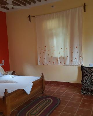 Royal Palm Kendwa