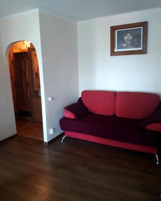Apartment on Michurinskaya 85