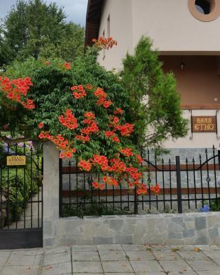 Villa Etno