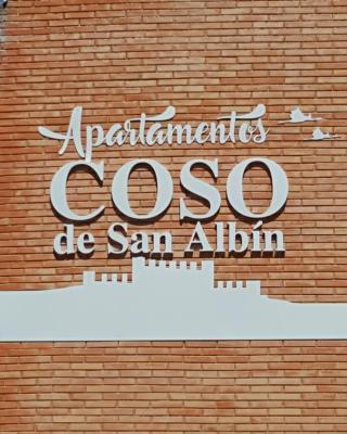 Apartamentos Coso de San Albin