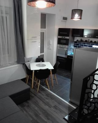 DownTown DeLuxe Apartment