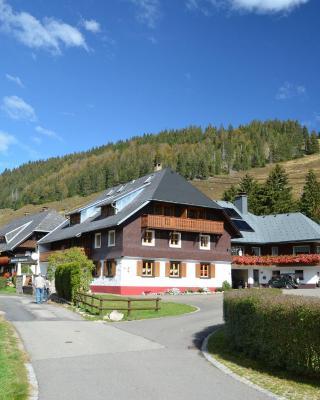 Ferienwohnungen Sternenthal