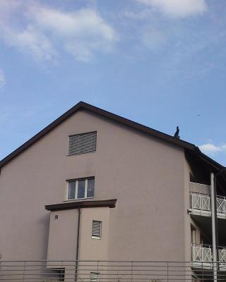 Homestay Wohngemeinschaft Jolanda