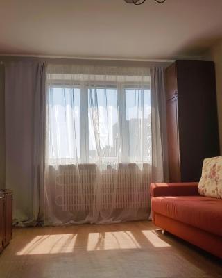 Apartment on Engelsa