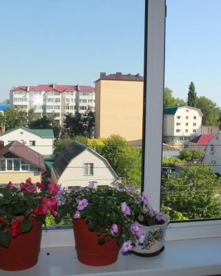 Apartment Shevchenko 241