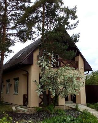 Country House on pereulok Rudniy