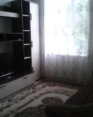 Apartment on Krasnoarmeyskaya 1