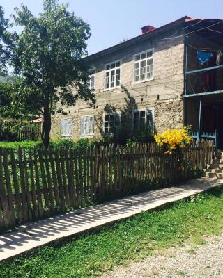 Zuriko Kakhiani's Guest House