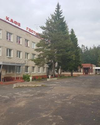 Hotel v Pesochnom
