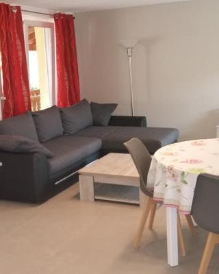 """Duplex """"le piémont des Vosges """""""