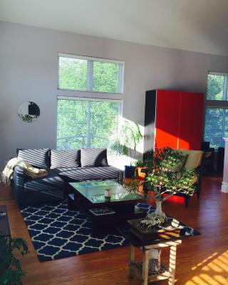Contemporary Open Loft