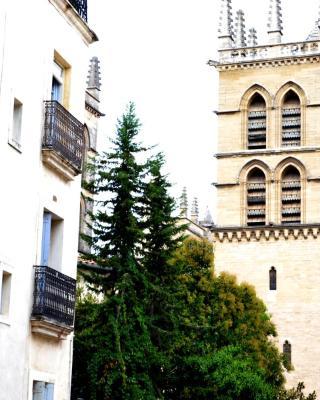 Bel appartement Centre Historique 47m2