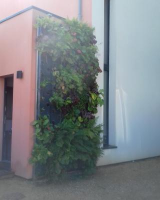 Maison passive et d'architecte