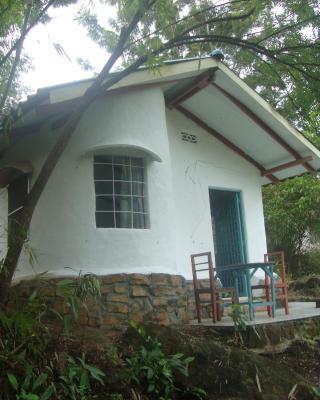 Jungle Lodge Eco Resort