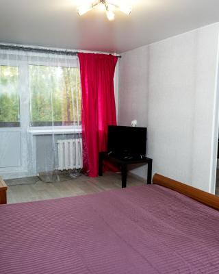 Апартаменты Берлога55 на Гагарина