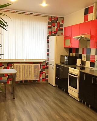 Apartment Krasnoarmeyskya 38/59