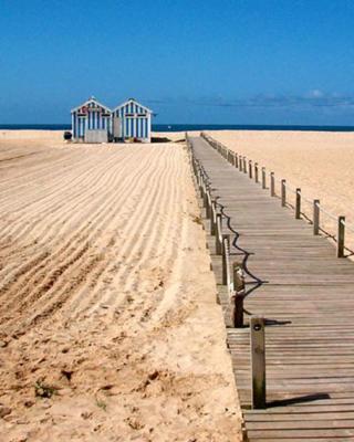 NEW APT center 1 min walk beach/river/casino!!!