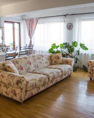Silvia's Apartment